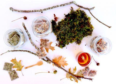 Boîte INFUSIONS BIO- Chic Des Plantes ! - Bouillons