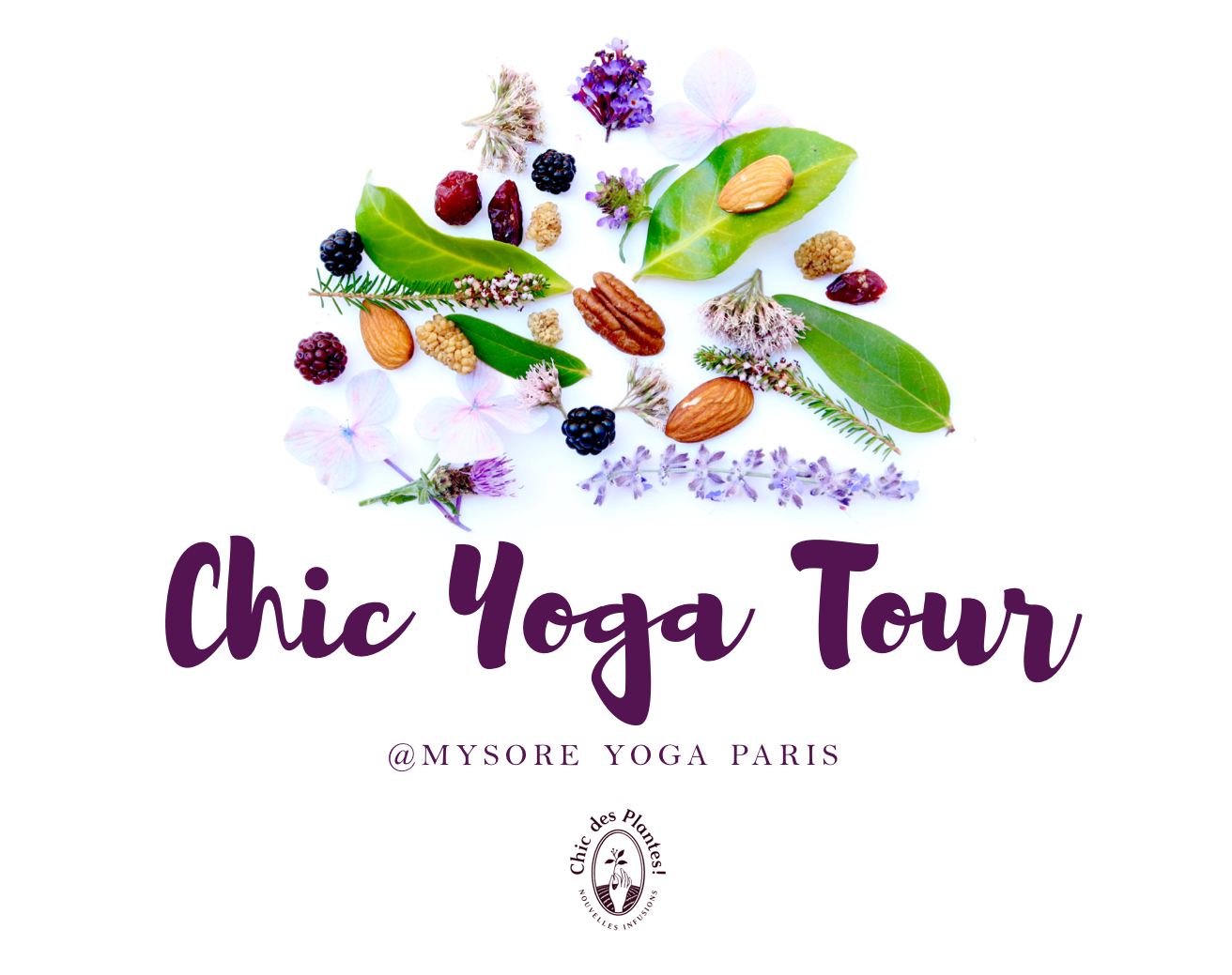 CYT-Studio-Mysore-Yoga-Paris