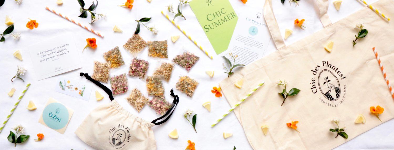 Abonnement Chic des Plantes Header-Box-juillet-Chic-Summer