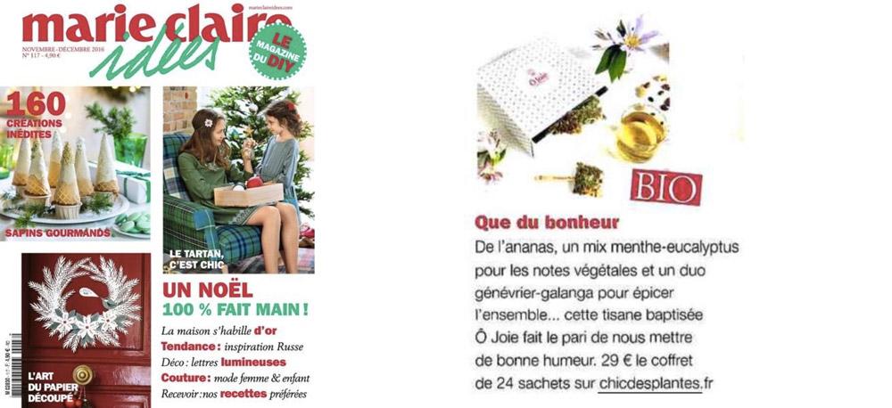Marie Claire Idées Chic Des Plantes novembre 2016